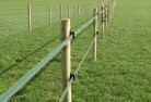 Abernethy Electric fencing 4